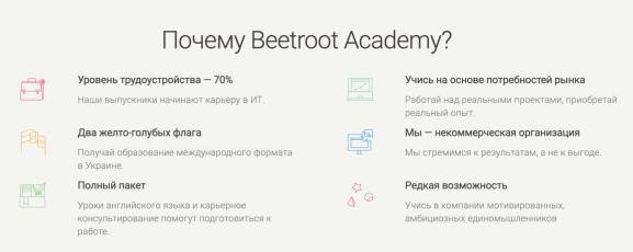 Beetroot Academy